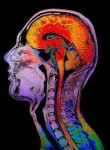 brain- unconscious
